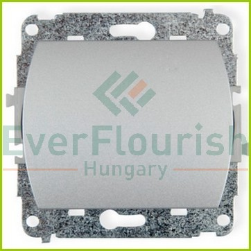 TREND  egypólusú kapcsoló jelzőfénnyel, ezüst 20673