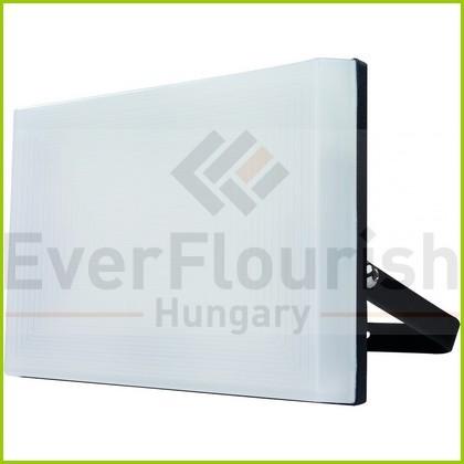 "LED fényvető ""Supra"" 30W 2702013010"