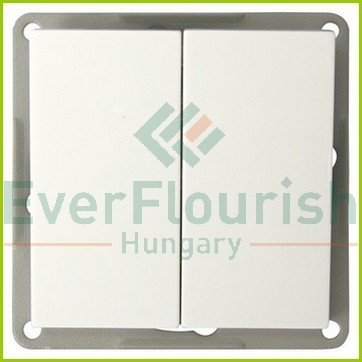 Modul Double change-over switch, white 4705H