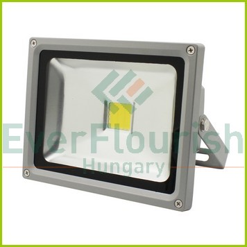 LED floodlight 20W COB, 1100lm, 120°, 4000K, 20 kW/1000h, IP65 6970H