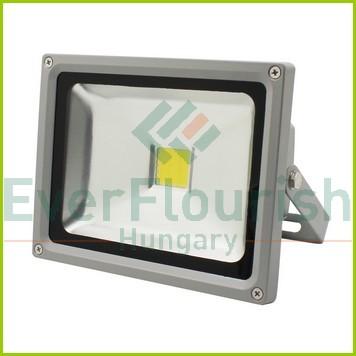 LED  fényvető COB, 20W 6970H
