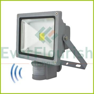 LED  fényvető mozgásérzékelővel, COB 20W 6971H