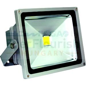 LED fényvető, LNG, COB 1db, 50W 7029H
