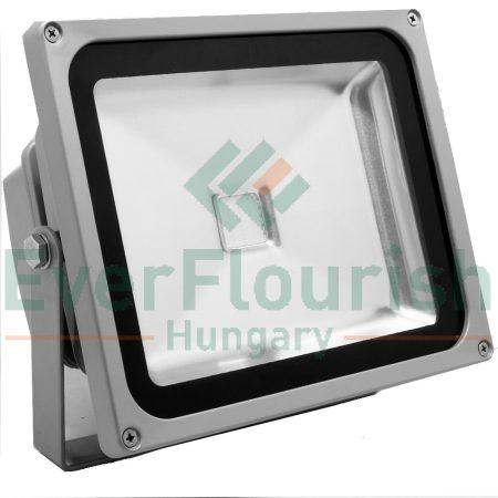 LED  fényvető COB, 30W 8141H