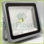 LED fényvető, COB, 50W 8142H