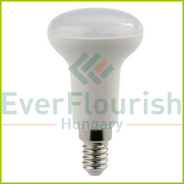 LED fényforrás, E14, spot, 6.0W R50 8159H