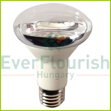 LED fényforrás, E27, spot, 5.0W R63 8160H