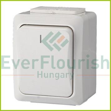 IT WATER 2 pólusú kapcsoló, falon kívüli, fehér, IP54 9851H